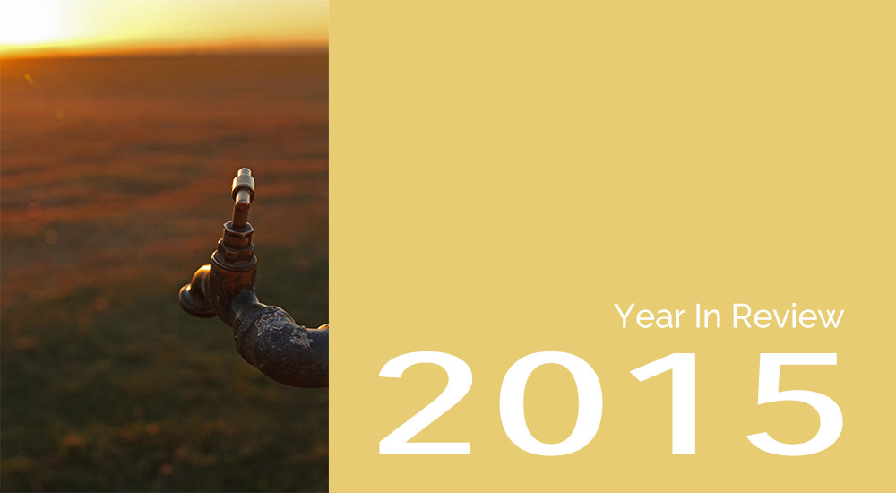 2015 Year In Review Mahlatse James