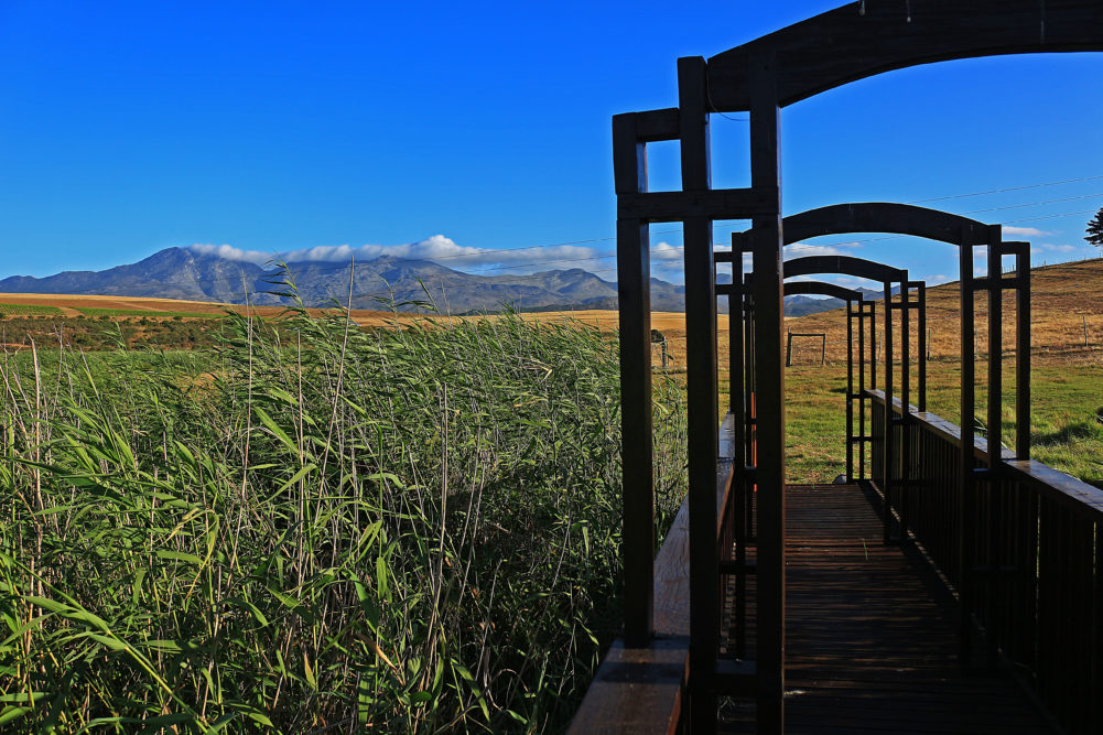 Views of the Overberg mountains at Wildekrans Wine Estate on My Lime Boots