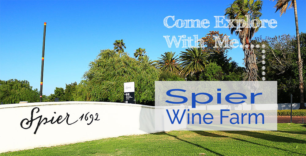 Come Explore With Me Spier Wine Farm on My Lime Boots