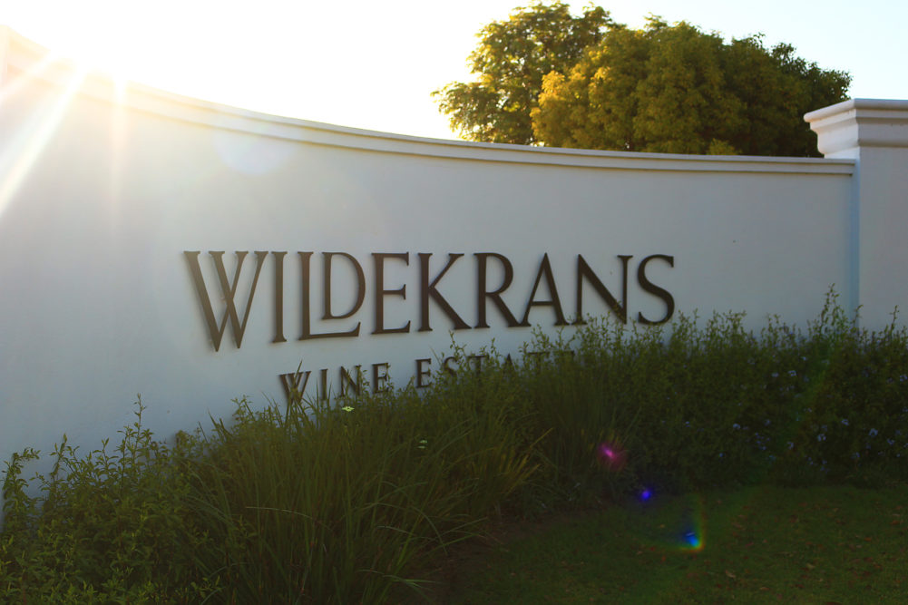 WIldekrans Wine Estate Bot River on My Lime Boots