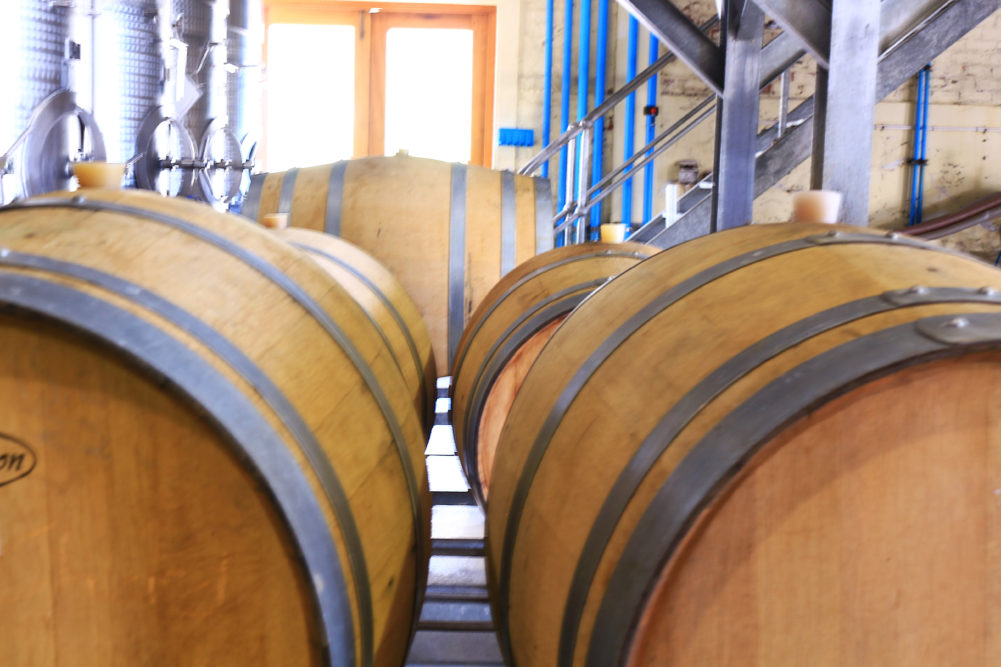 Oak barrels at Grande Provence on My Lime Boots
