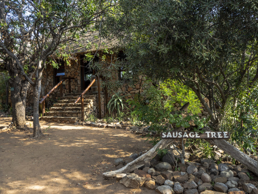 Entrance to Sausage Tree Safari Camp in the Balule Conservancy in Hoedspruit on My Lime Boots