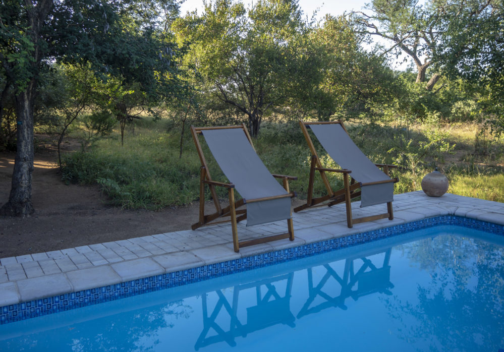 Pool area at Woodpecker Lodge in the Hoedspruit Wildlife Estate on My Lime Boots