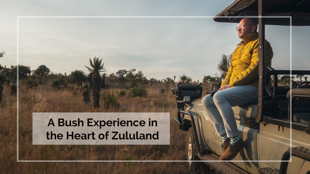 A Bush Experience in the Heart of Zululand